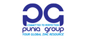 Punia Group